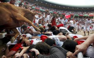 pamplona-weds-bull_3368291a-large